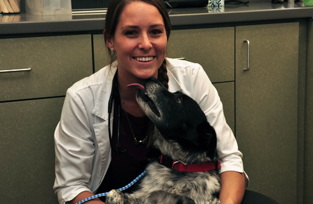 Make an Appointment to come visit us at Lone Oak Veterinary Clinic